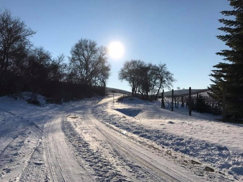 winterlicher Siglosgrund-Weg