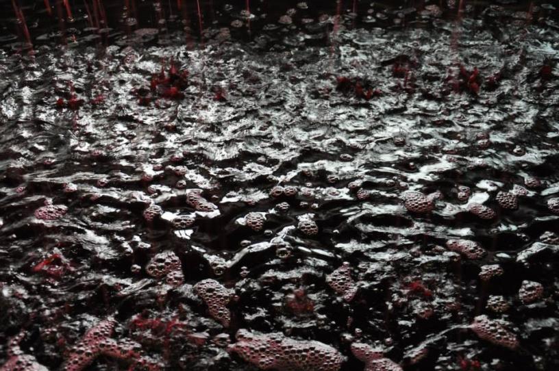dunkelrotes Traubensaft-Meer